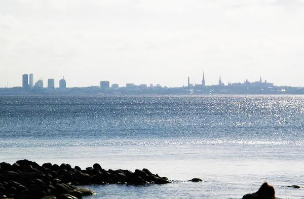 Maisemaa Tallinnasta. Kuva: Titta Hämäläinen